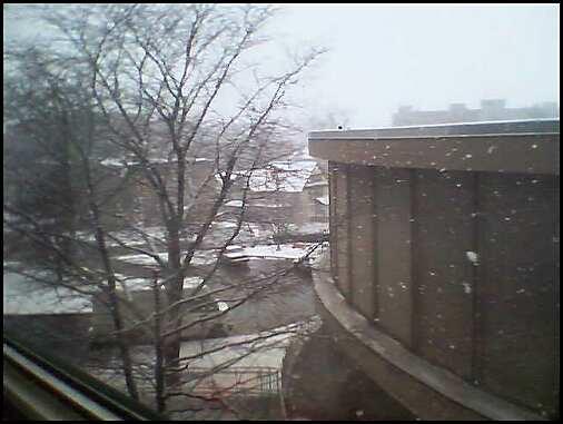 snow11607.jpeg